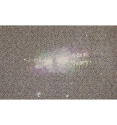 LALLEMANT_Rainbow image of the Egg Nebula