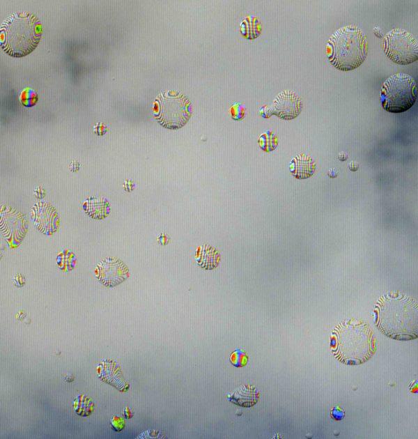 fabien leaustic_la couleur des nuages_1_VARIATION_ARTJAWS