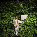 Maja Smrekar_Survinal Kit for the Anthropocene 2015_No02_ARTJAWS