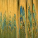 JAMES_TheVastLand-2016detail_ARTJAWS