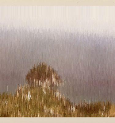 Seven Memories Of Capri I Never Had, memory n.4, Capri 1963