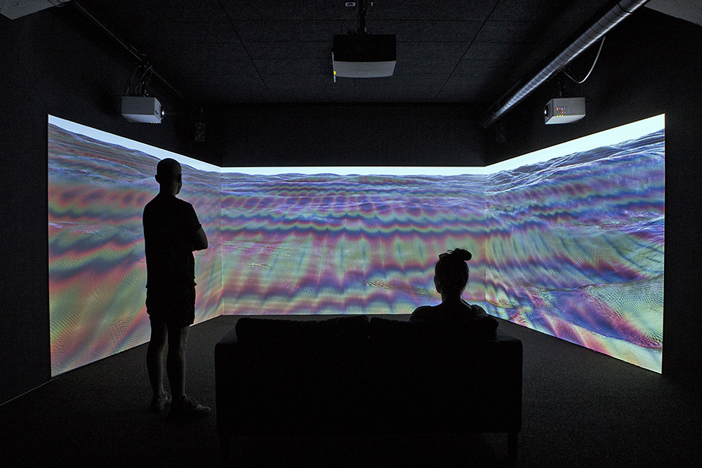 """""""SIGNALS"""", alteration of natural forms through computer technology at the Interstitial Gallery in Seattle"""